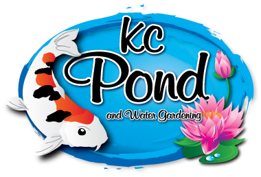 KC Pond & Water